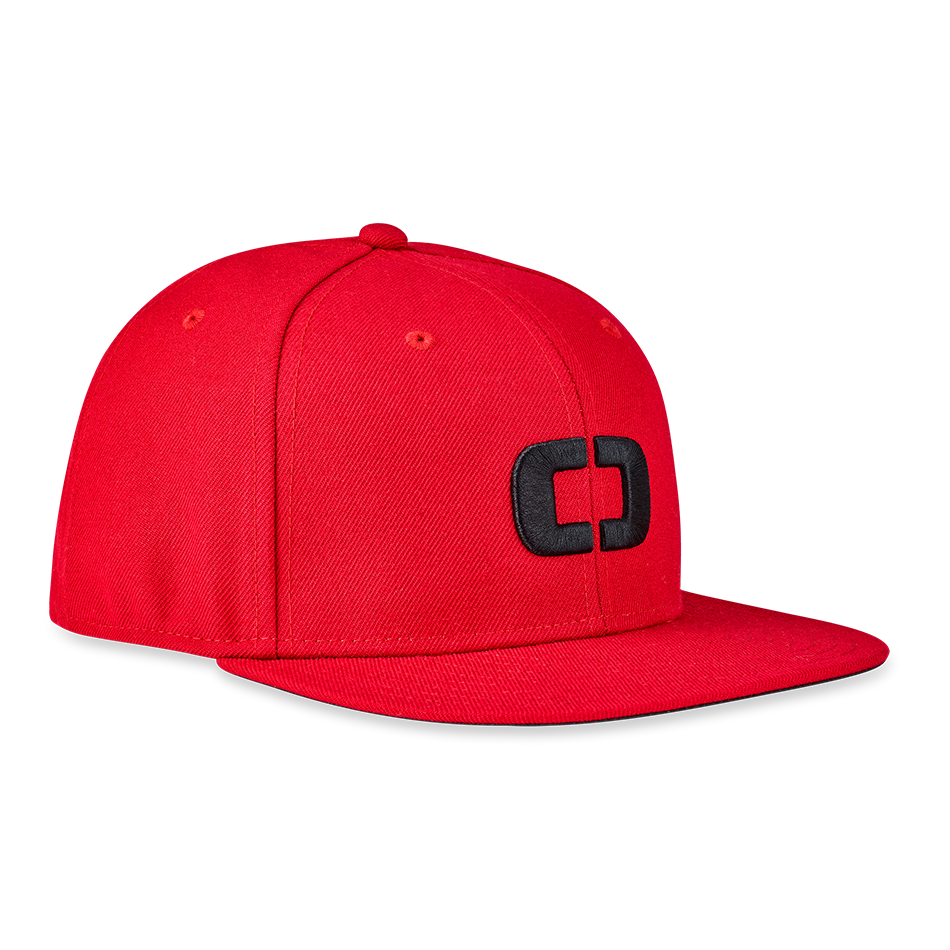 ALPHA Icon Snap Back Hat - View 2