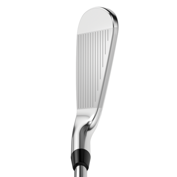 Apex Pro 21 Irons - View 4