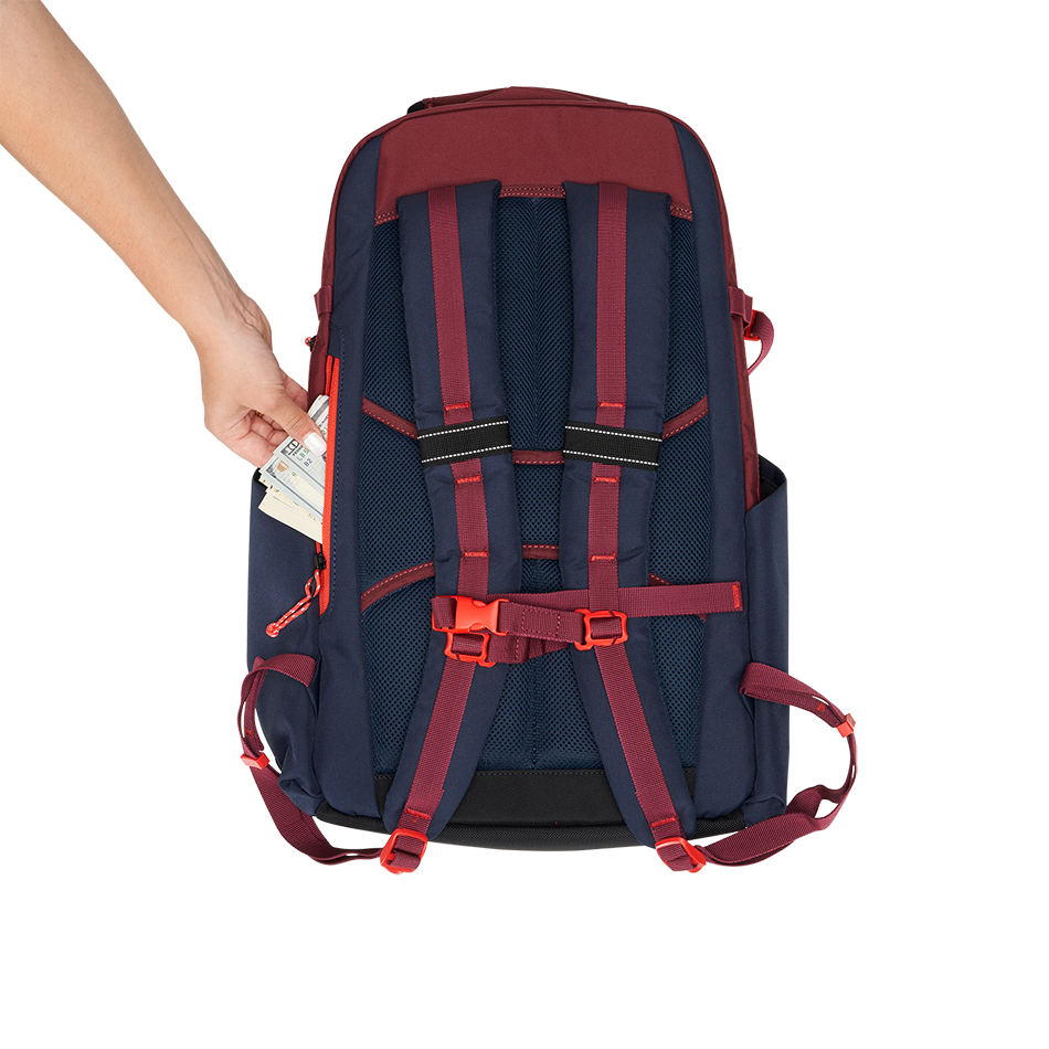 ALPHA 25L Backpack - View 10