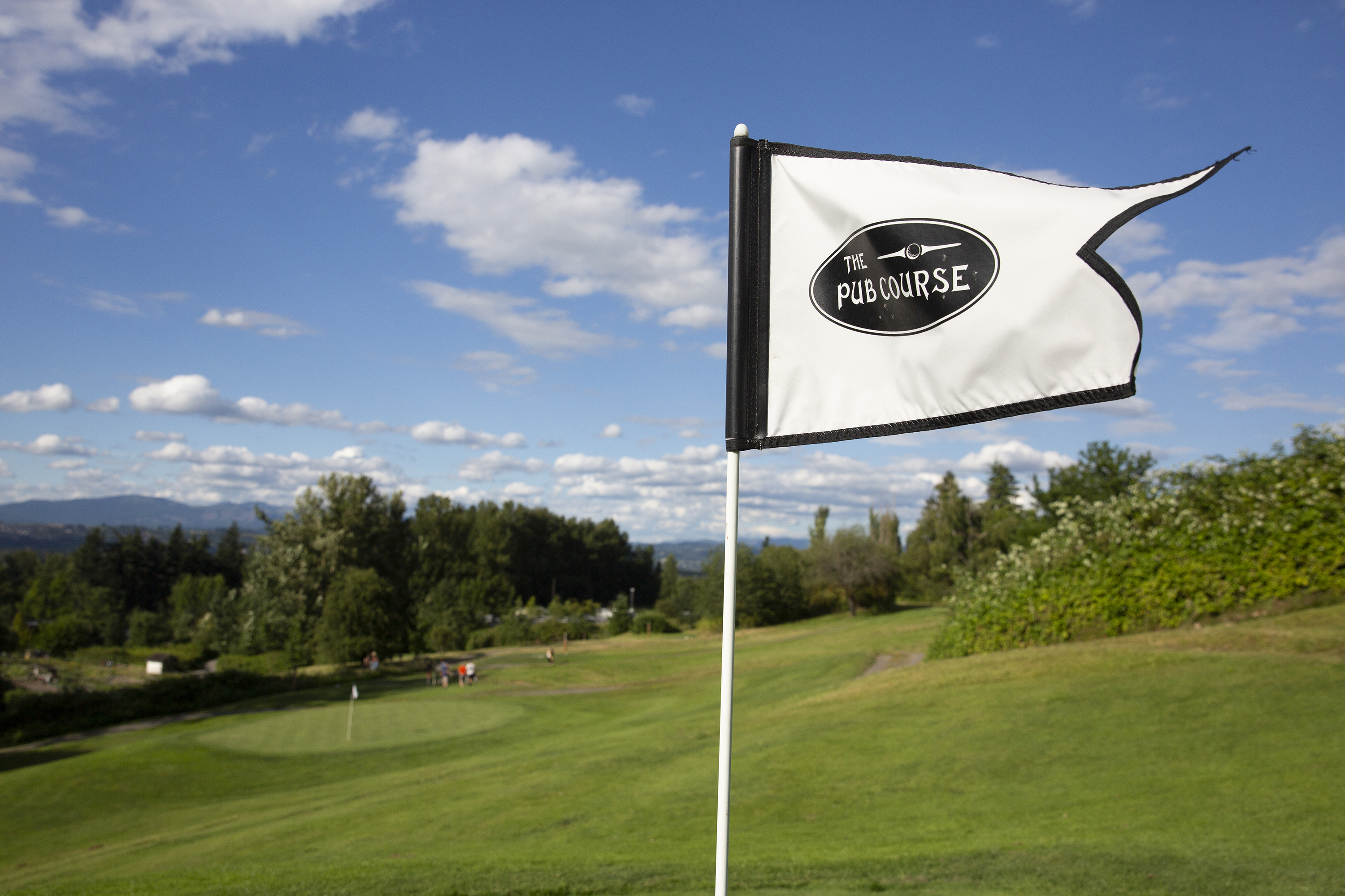 Pub Course Flag